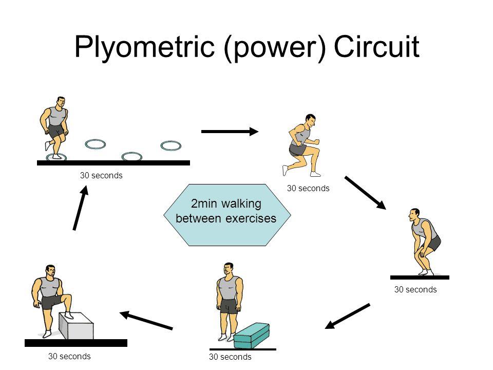 Plyometric (power) Circuit