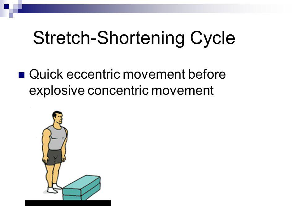 Stretch-Shortening Cycle
