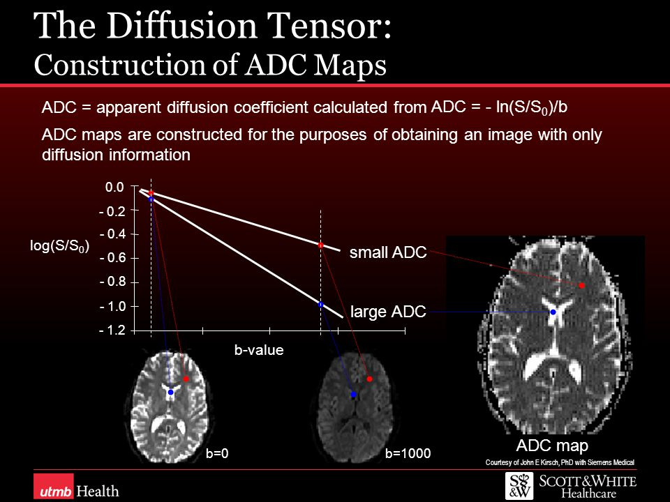 The Diffusion Tensor: Construction of ADC Maps