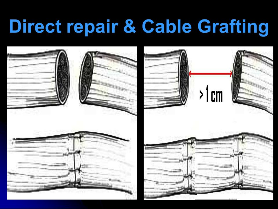 Direct repair & Cable Grafting
