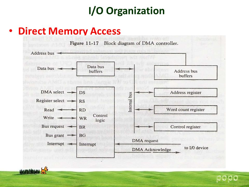 I/O Organization Direct Memory Access popo