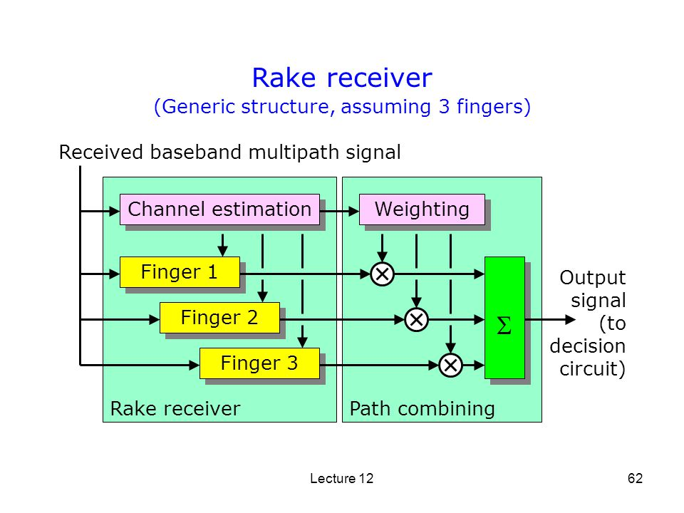 (Generic structure, assuming 3 fingers)