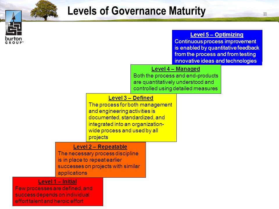 Levels of Governance Maturity