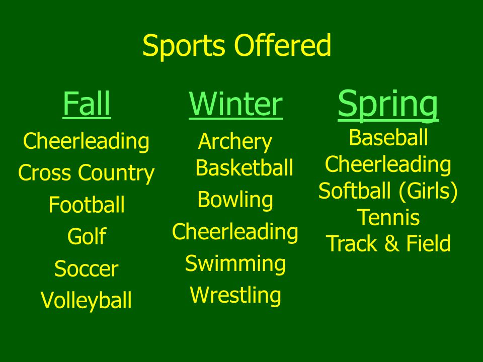 Spring Fall Winter Sports Offered Baseball Cheerleading
