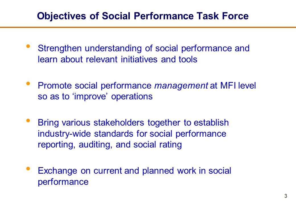 Objectives of Social Performance Task Force