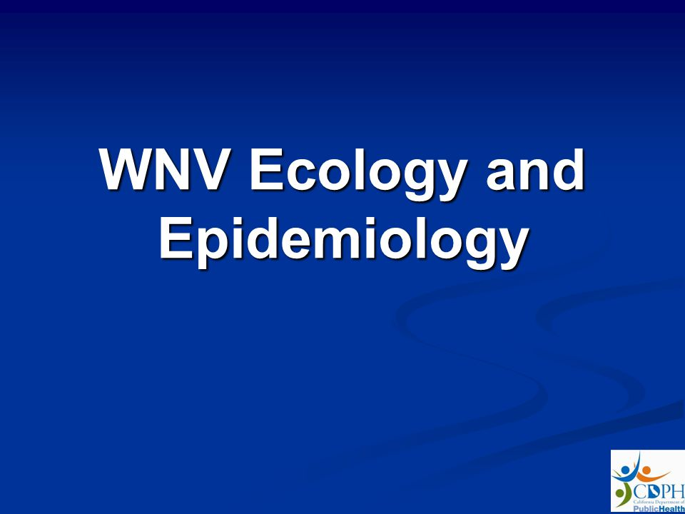 WNV Ecology and Epidemiology