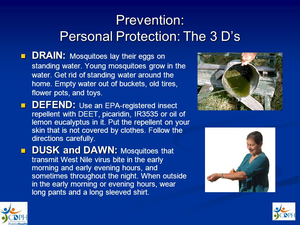 Prevention: Personal Protection: The 3 D's