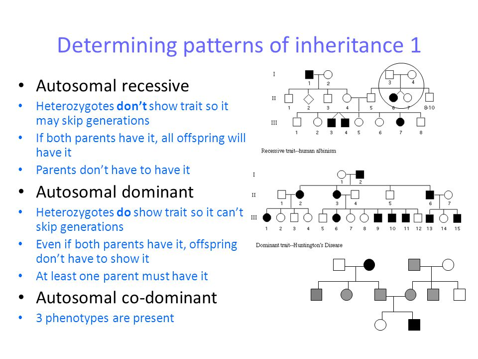 Determining patterns of inheritance 1