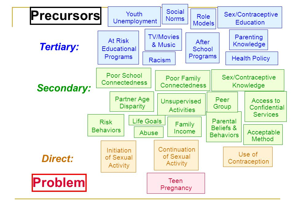 Precursors Problem Tertiary: Secondary: Direct: Social Youth