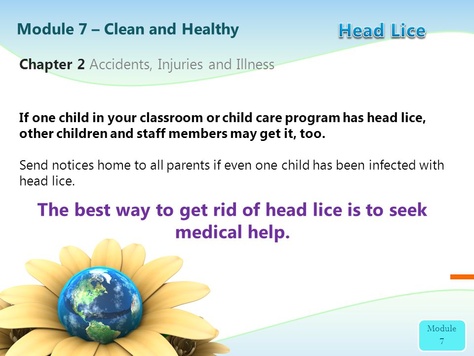 The best way to get rid of head lice is to seek medical help.