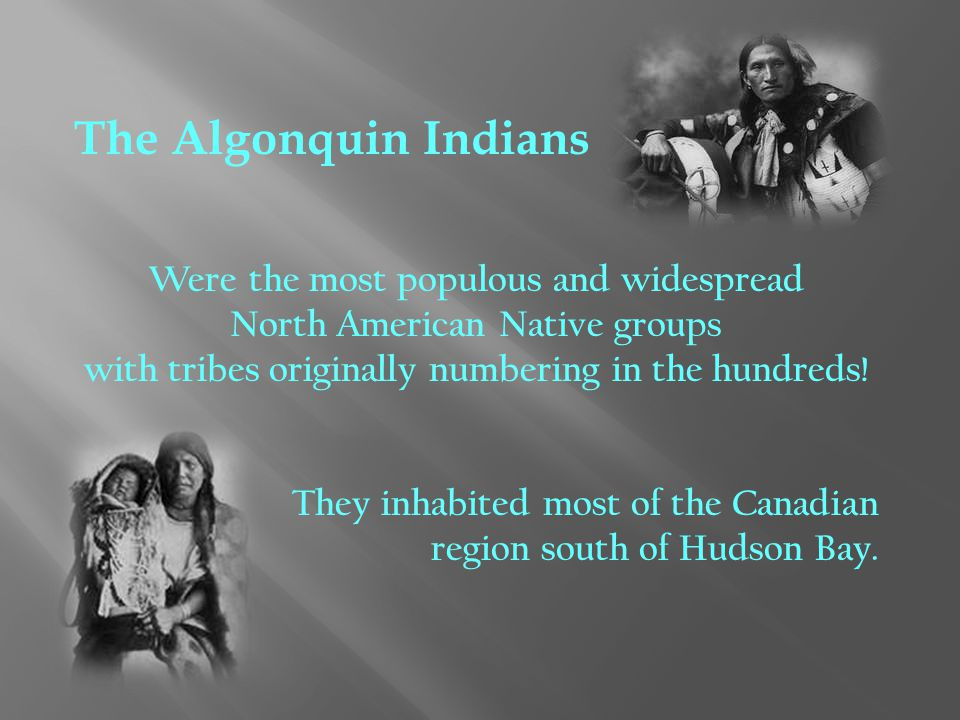The Algonquin Indians Were the most populous and widespread