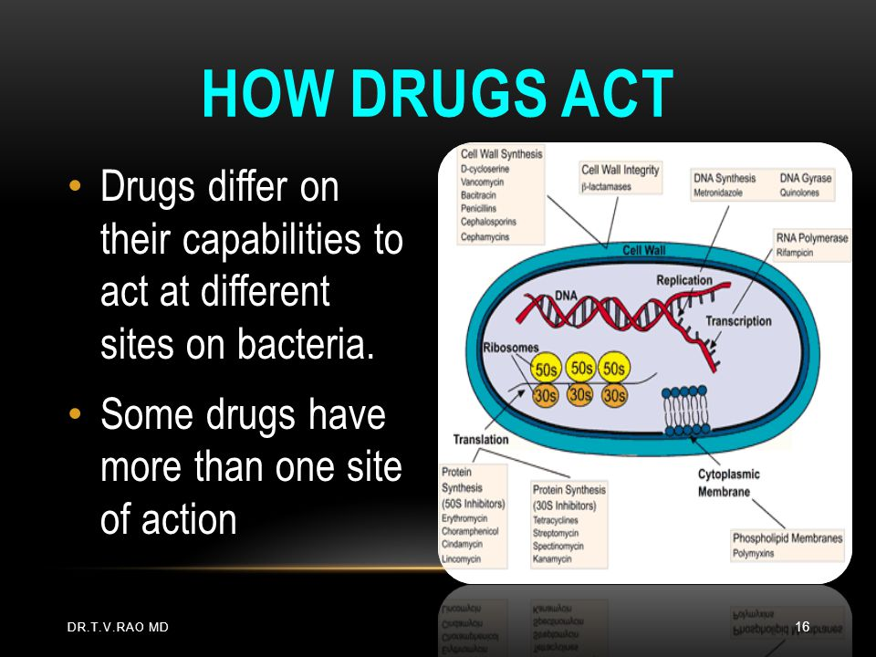 How Drugs Act Drugs differ on their capabilities to act at different sites on bacteria. Some drugs have more than one site of action.