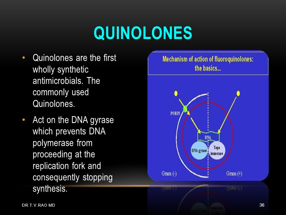 Quinolones Quinolones are the first wholly synthetic antimicrobials. The commonly used Quinolones.
