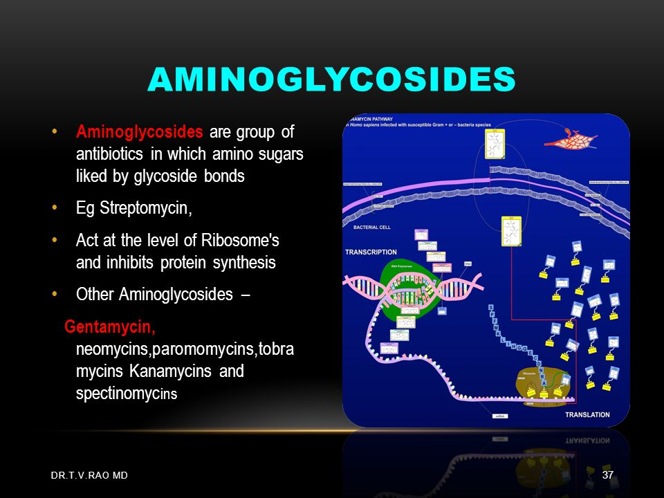 Aminoglycosides Aminoglycosides are group of antibiotics in which amino sugars liked by glycoside bonds.
