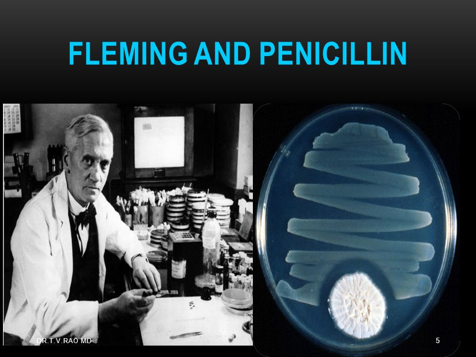 Fleming and Penicillin