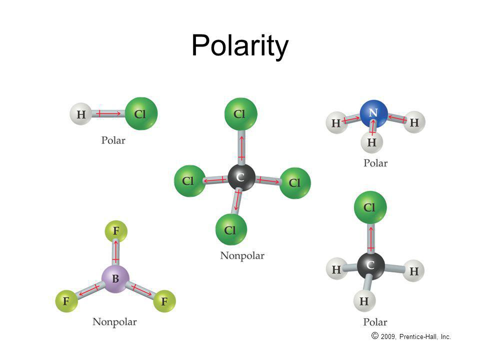 Polarity © 2009, Prentice-Hall, Inc.