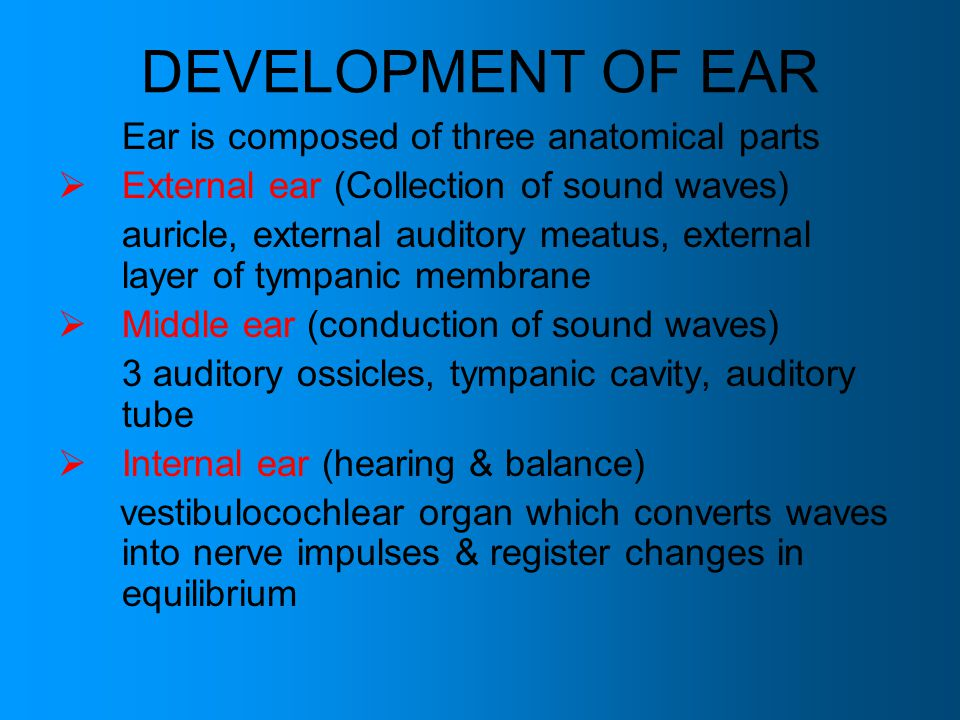 DEVELOPMENT OF EAR Ear is composed of three anatomical parts