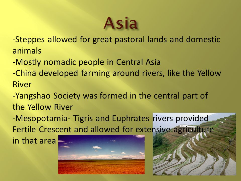 Asia -Steppes allowed for great pastoral lands and domestic animals