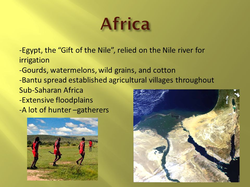 Africa -Egypt, the Gift of the Nile , relied on the Nile river for irrigation. -Gourds, watermelons, wild grains, and cotton.