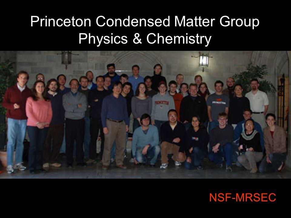 Princeton Condensed Matter Group