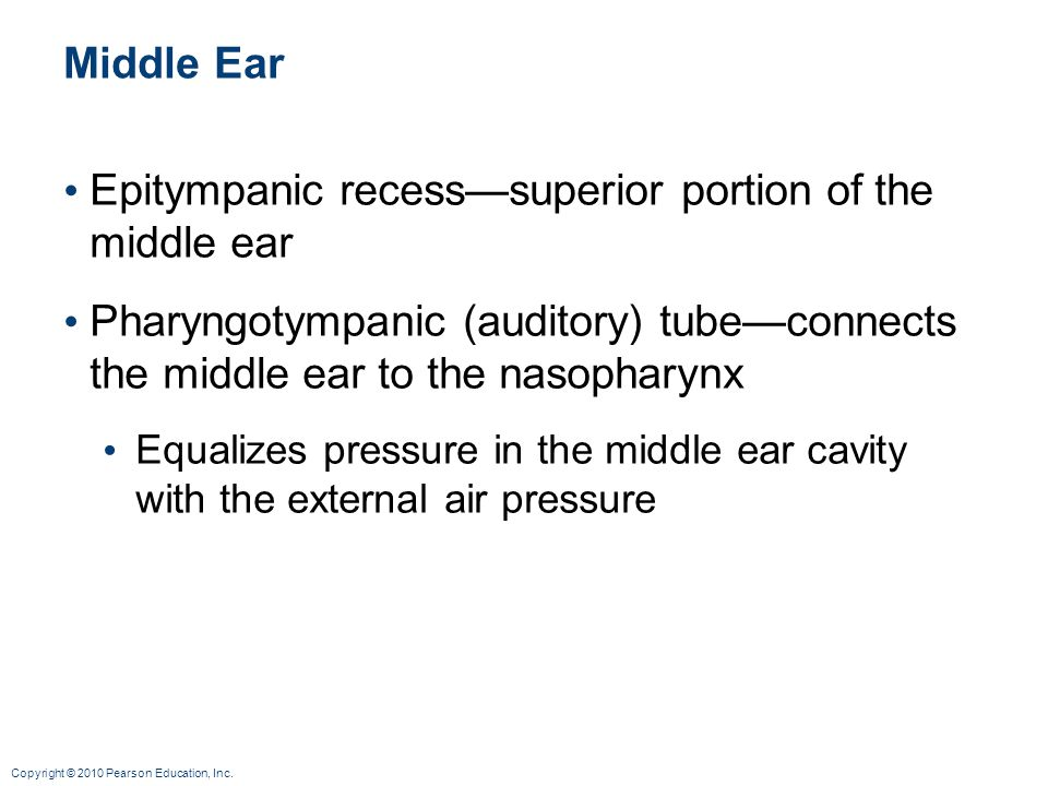 Epitympanic recess—superior portion of the middle ear