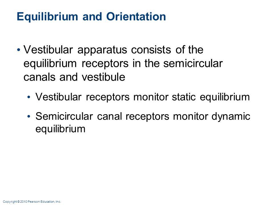Equilibrium and Orientation
