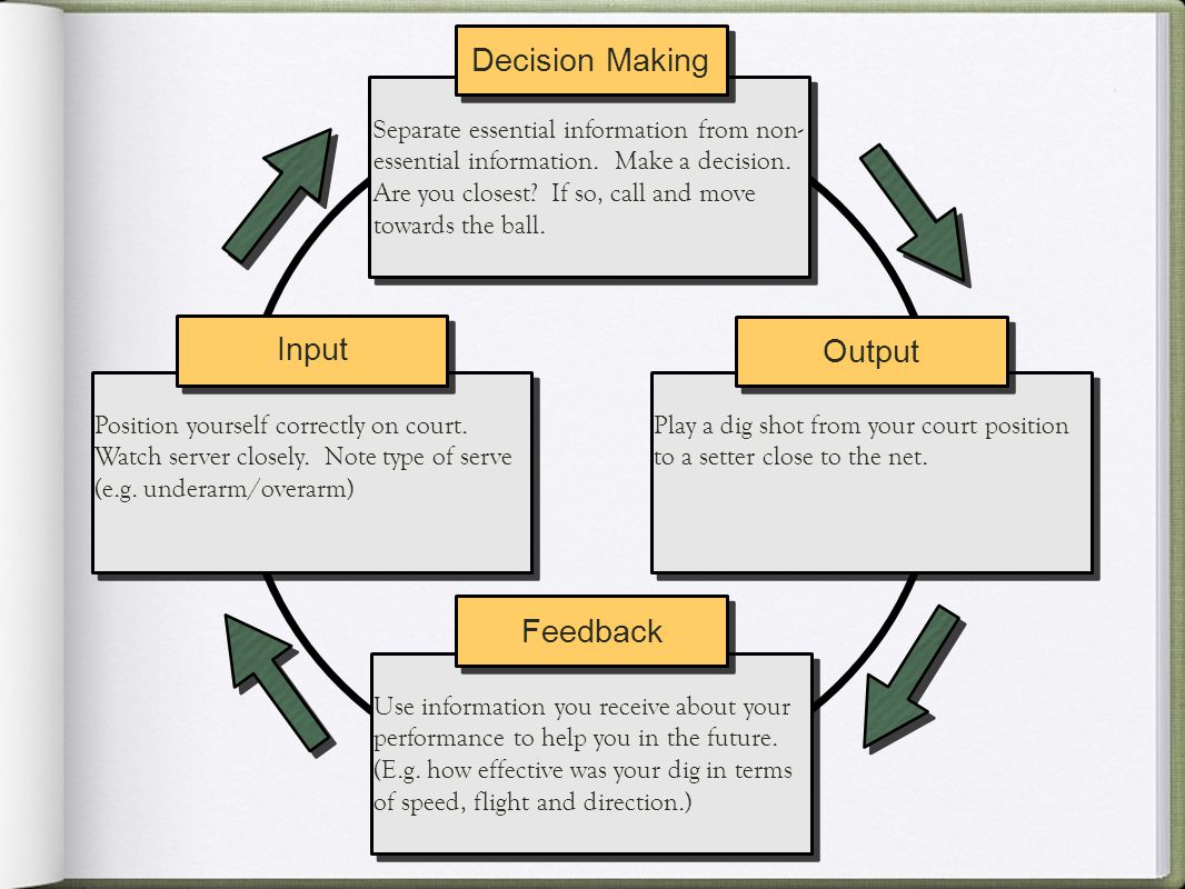 Decision Making Input Output Feedback