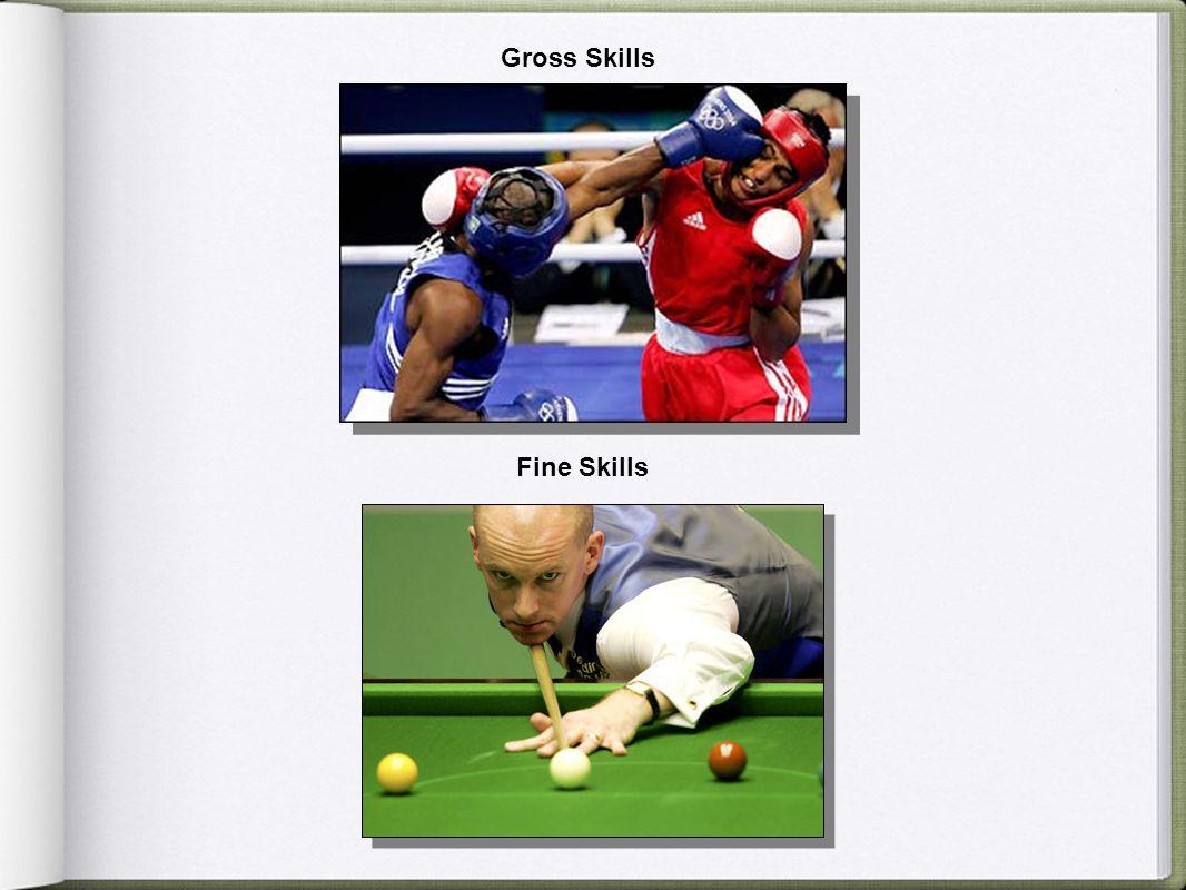 Gross Skills Fine Skills