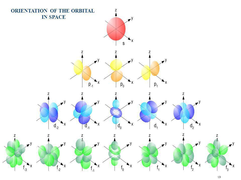 ORIENTATION OF THE ORBITAL