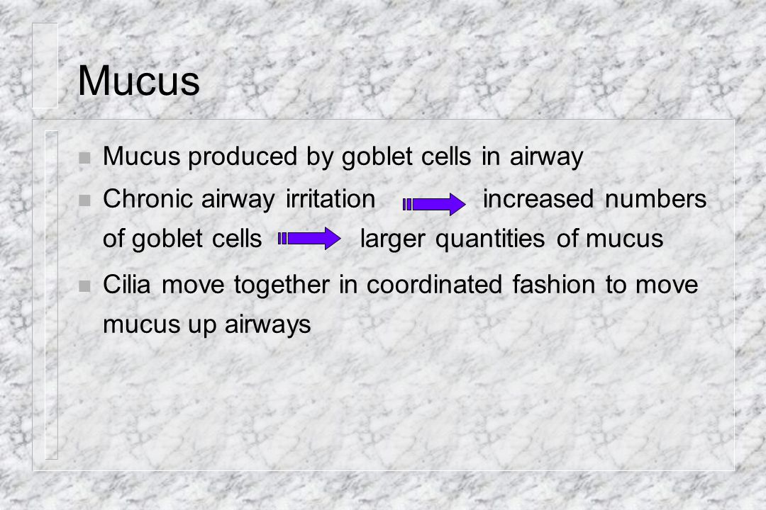 Mucus Mucus produced by goblet cells in airway