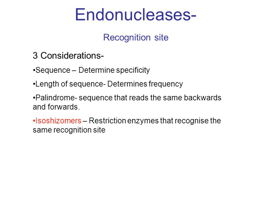 Endonucleases- Recognition site