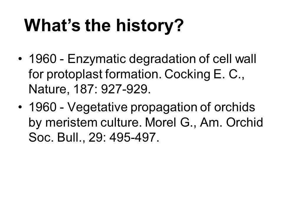 What's the history 1960 - Enzymatic degradation of cell wall for protoplast formation. Cocking E. C., Nature, 187: 927-929.