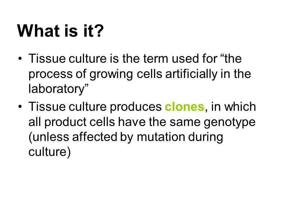 What is it Tissue culture is the term used for the process of growing cells artificially in the laboratory