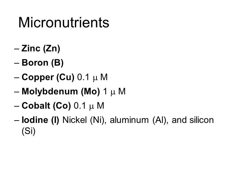 Micronutrients Zinc (Zn) Boron (B) Copper (Cu) 0.1 m M