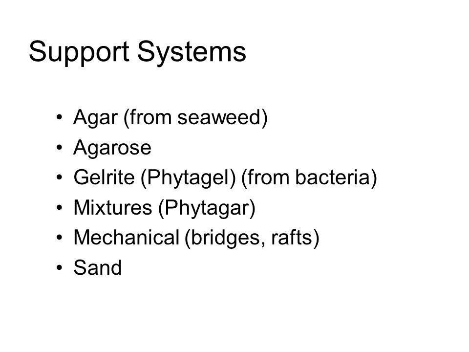 Support Systems Agar (from seaweed) Agarose