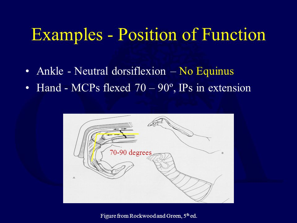 Examples - Position of Function