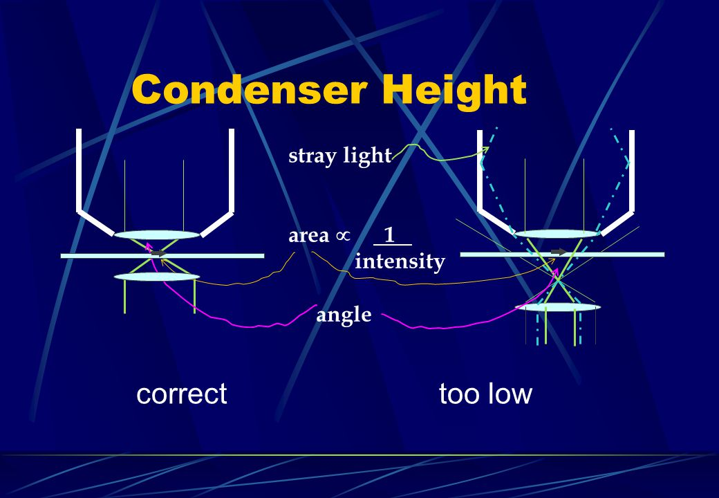Condenser Height correct too low stray light area  . 1 . intensity