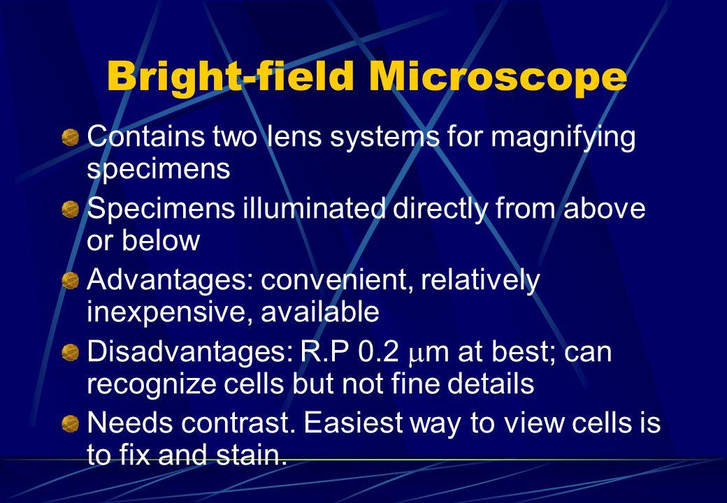 Bright-field Microscope