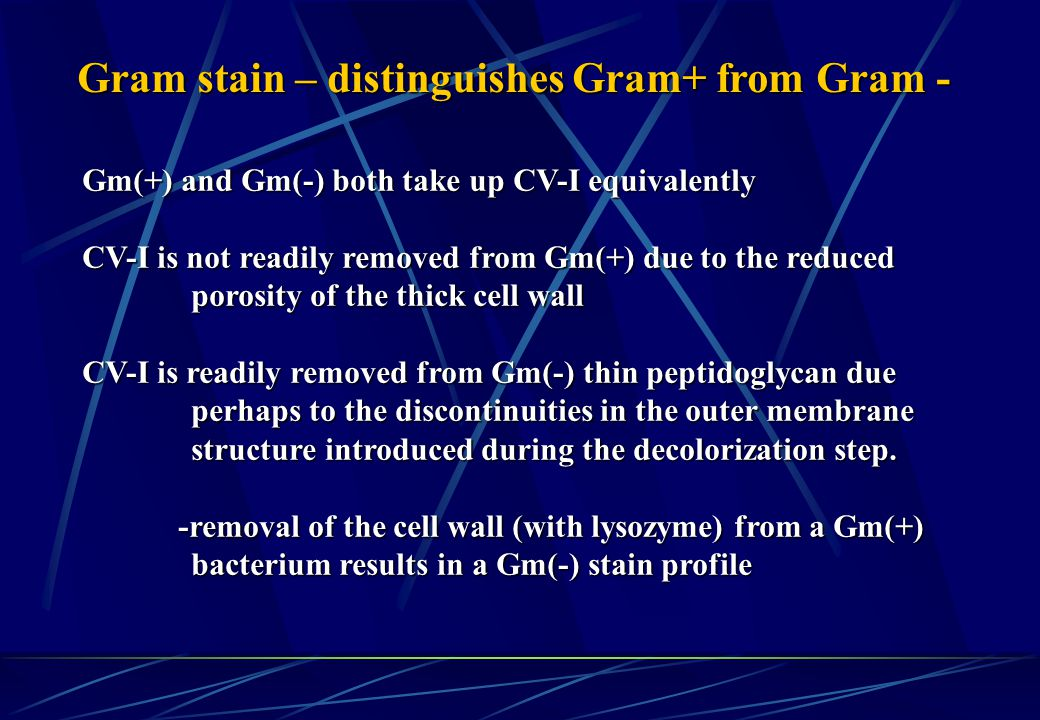 Gram stain – distinguishes Gram+ from Gram -