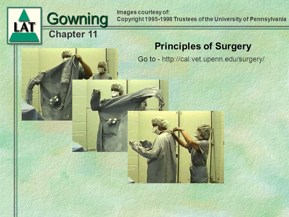 Gowning Principles of Surgery