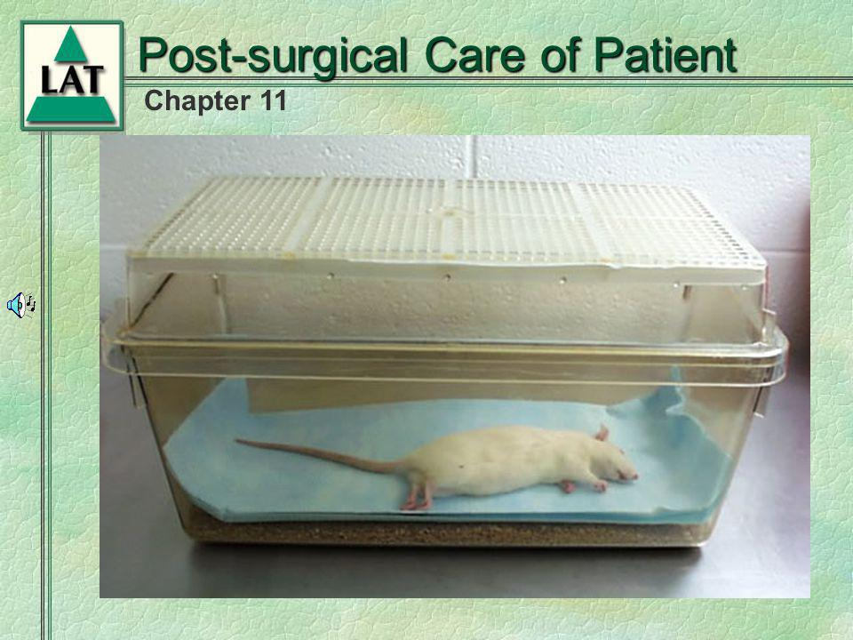 Post-surgical Care of Patient
