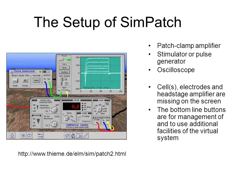 The Setup of SimPatch Patch-clamp amplifier
