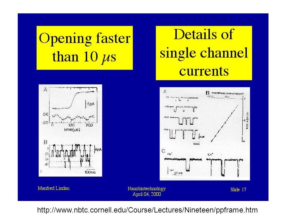 http://www.nbtc.cornell.edu/Course/Lectures/Nineteen/ppframe.htm