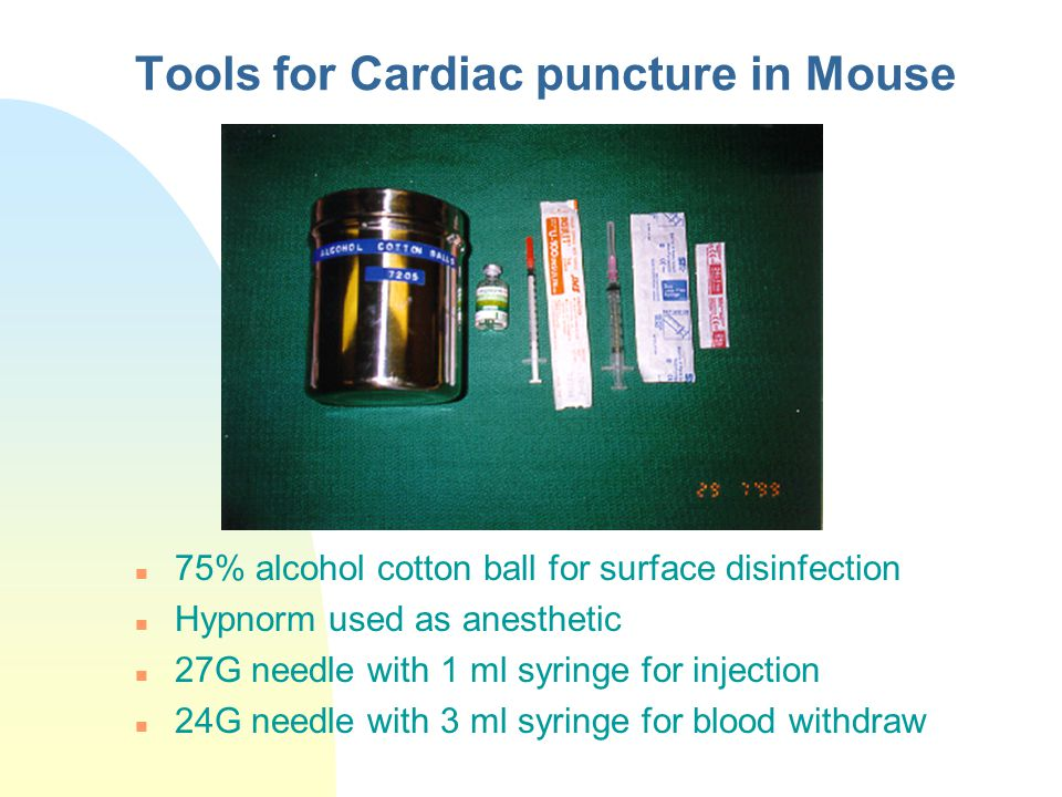 Tools for Cardiac puncture in Mouse