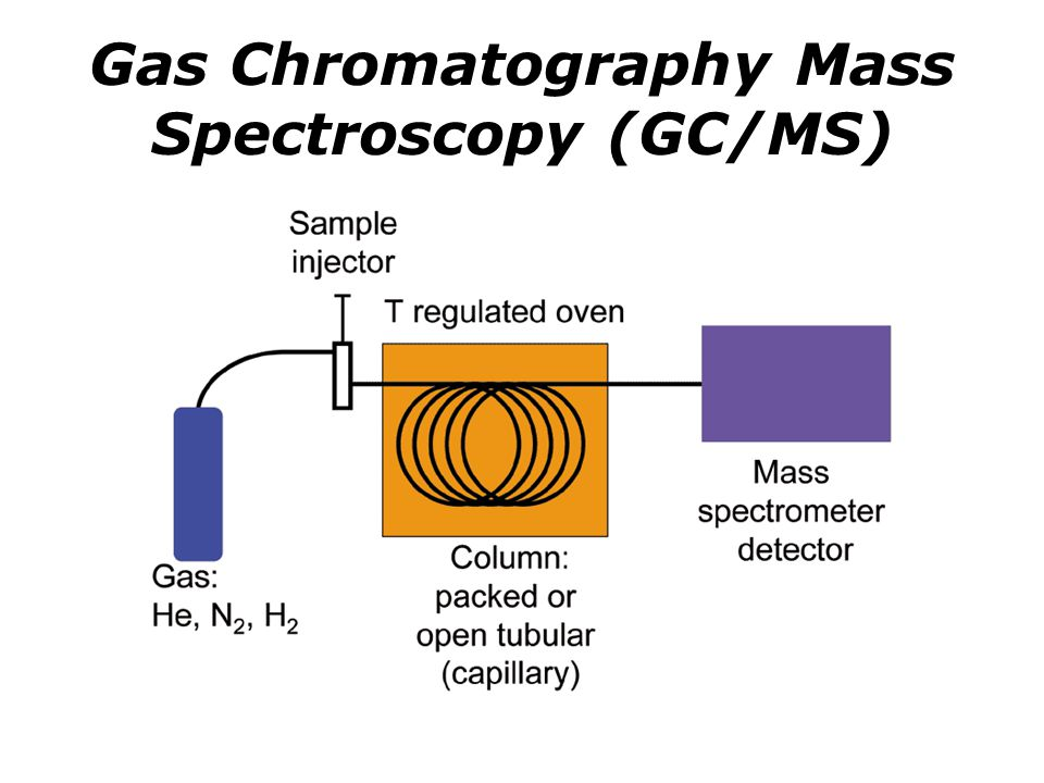 Gas Chromatography Mass Spectroscopy (GC/MS)