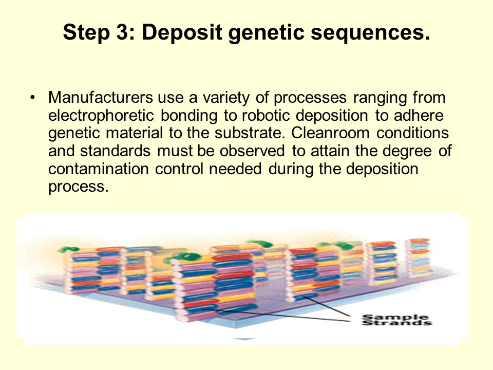 Step 3: Deposit genetic sequences.