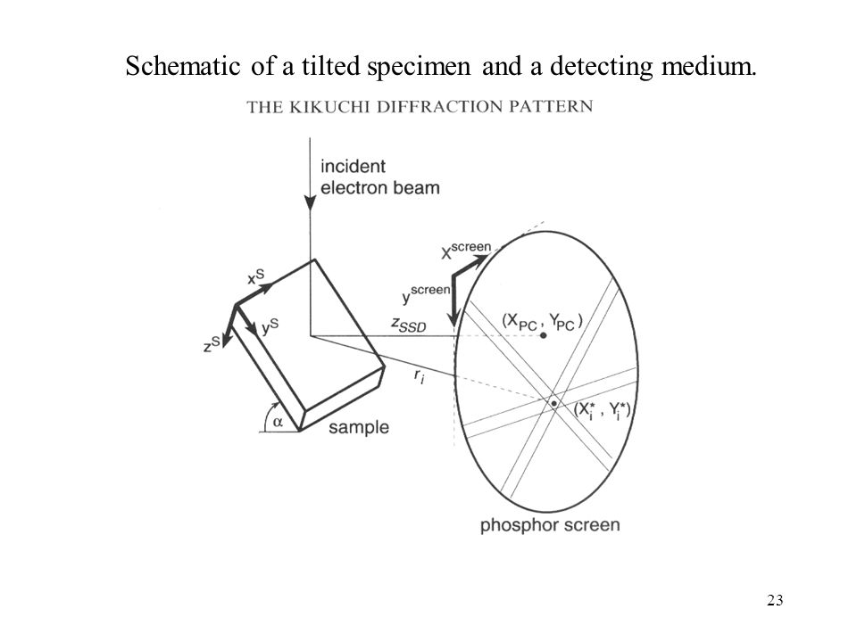 Schematic of a tilted specimen and a detecting medium.