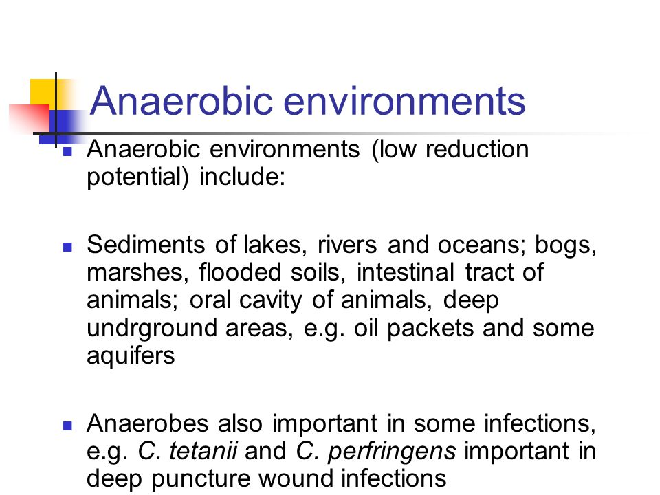 Anaerobic environments