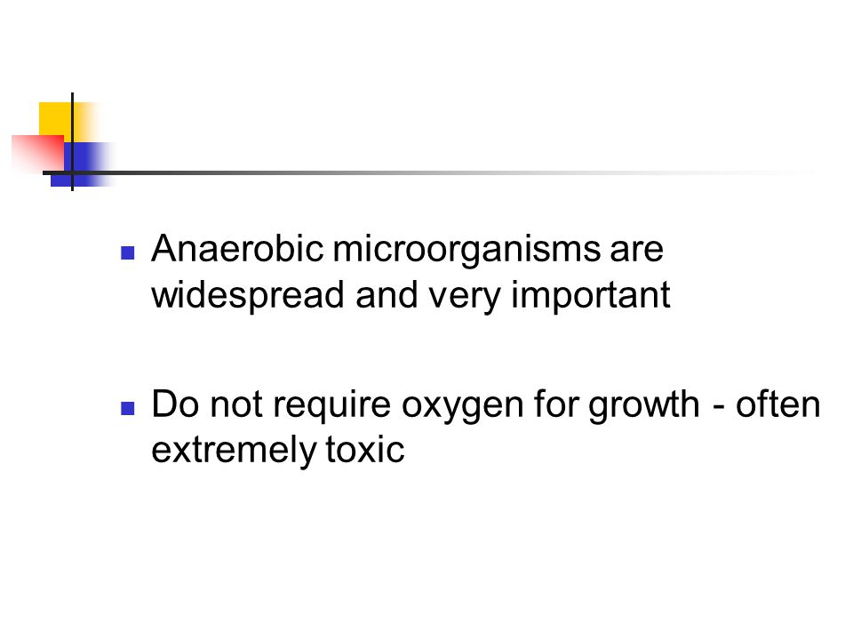 Anaerobic microorganisms are widespread and very important
