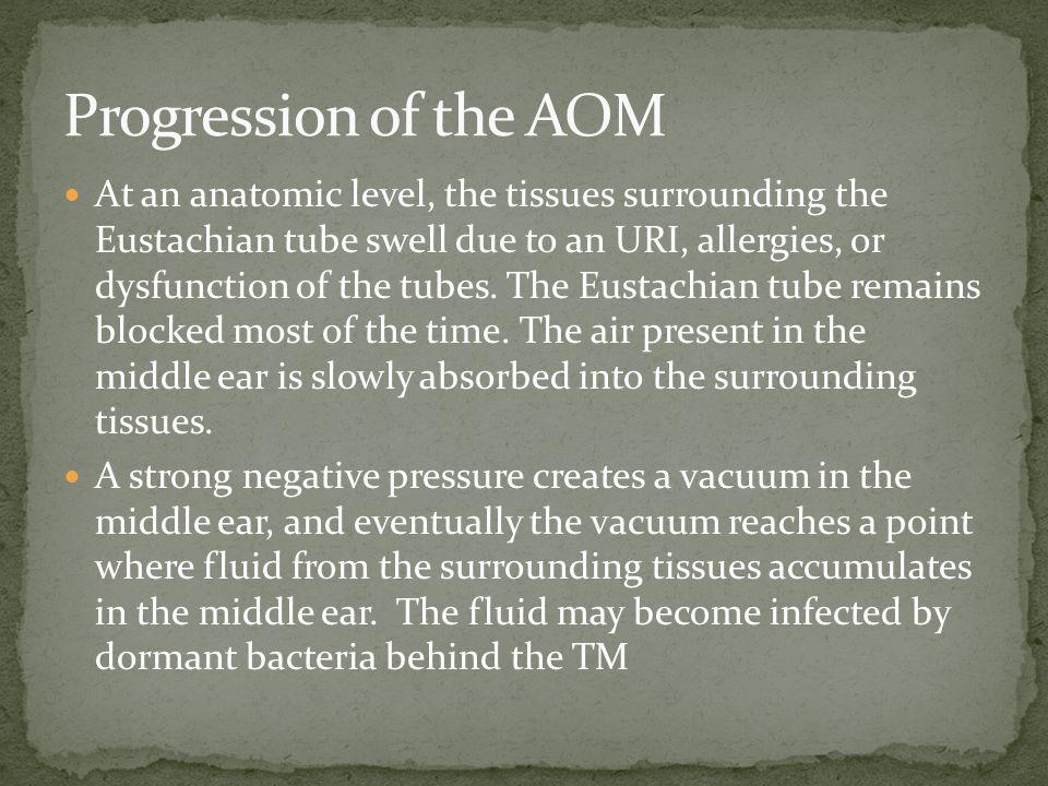 Progression of the AOM
